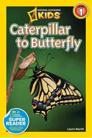 National Geographic Kids Level 1 Caterpillar to Butterfly
