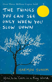 The Things You Can See Only When You Slow Down (Hardcover, 영국판)